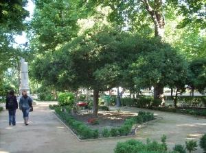 pitasporo-sano